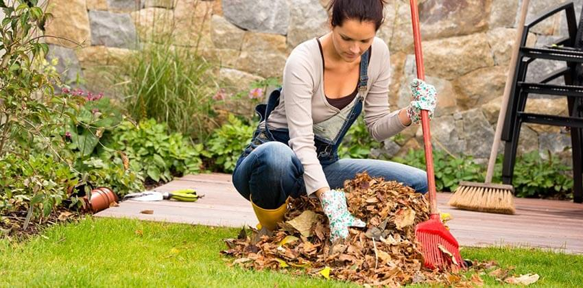 gardencleanup